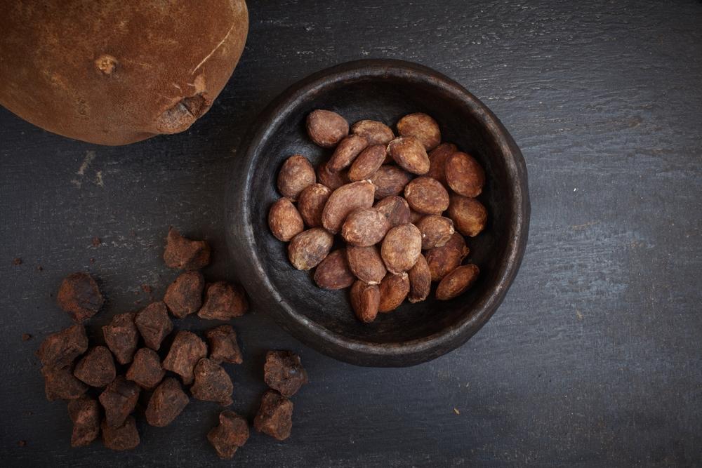 Amazonische Cupuaçu Butter – Fettsäuren-Balance für eine perfekte Feuchtigkeit