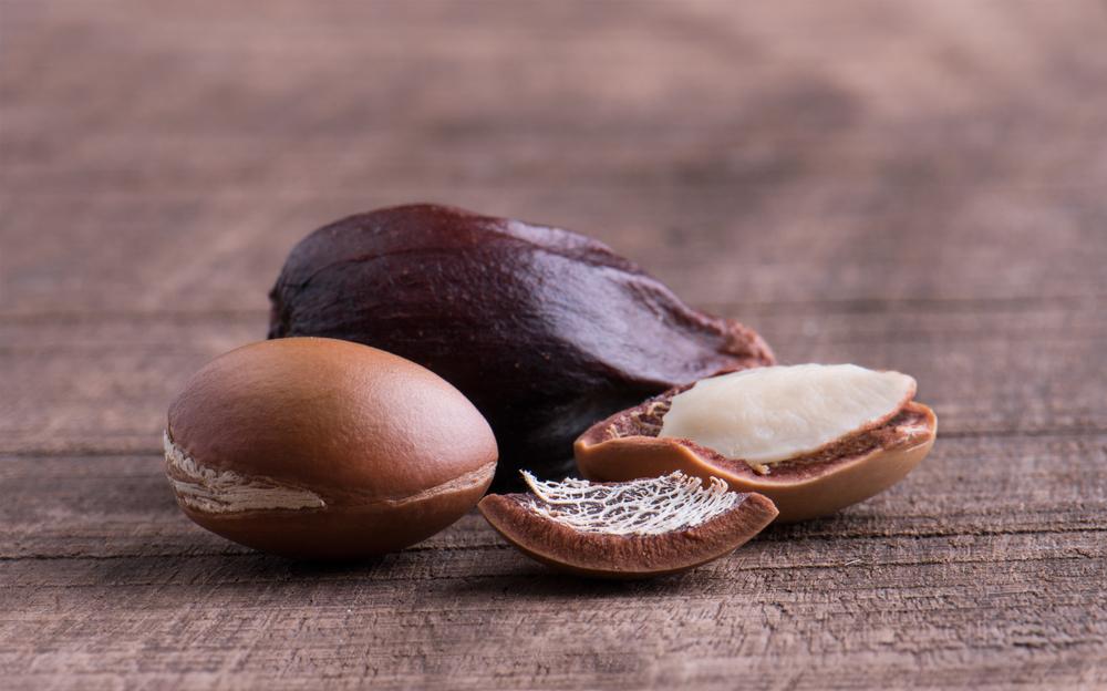 Arganöl – verjüngendes, flüssiges Gold und Hitzeschutz für Haare
